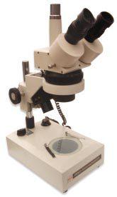 Estereomicroscopio Trinocular Con Zoom